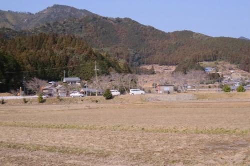 紀宝町でバードウォッチング [2014](1)