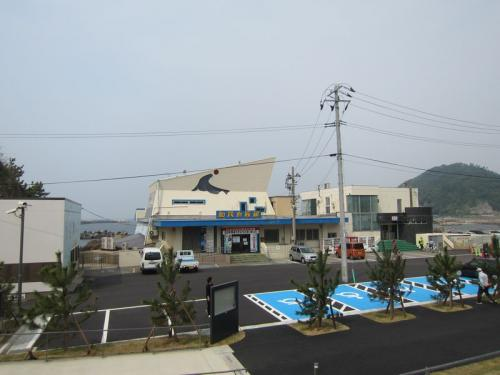 いよいよオープン~クラゲ世界一の新加茂水族館!