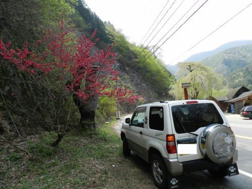 山河料理『掘割』で蕎麦を食べたら店の前に『長寿の滝』があった!◆2014年GW/ハナモモを見に木曽へ≪その3≫