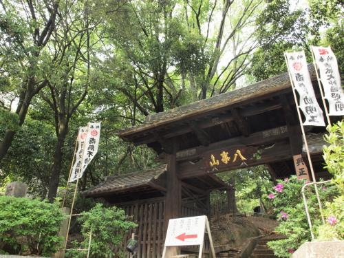 「名古屋飛ばし」って、本当ですか? ~ 他県民に名古屋のオススメを聞かれても、名古屋メシの話しかできなかったら、もうアウトだがや。編