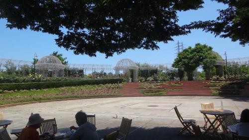 小田原フラワーガーデン アジサイとガーデンの散策