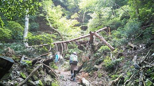 2014.7.6 打見山~蓬莱山 in 同級生