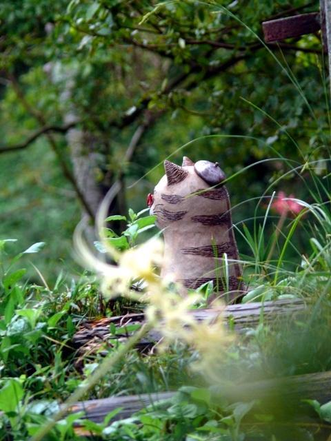 2011年7月  城山公園の彼岸花