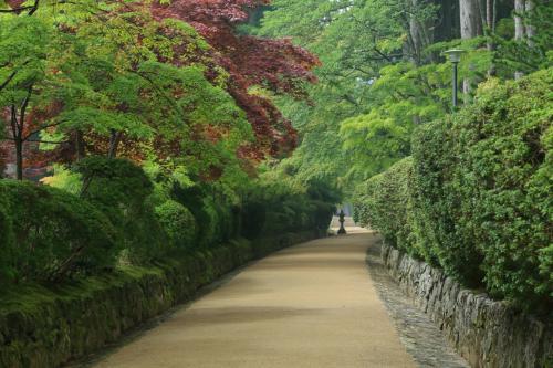 和歌山 高野山と花園あじさい園