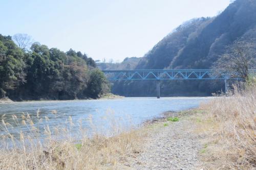 那珂川でバードウォッチング [2014](1)