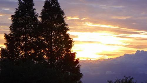 立秋を過ぎた8月8日の早朝散歩