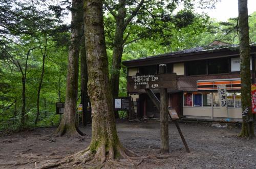 日光ドライブ 二日目 湯ノ湖、戦場ヶ原、竜頭の滝、滝尾神社