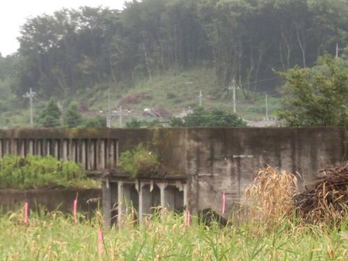 想定外!!タクシーでたどり着けず、帰りは歩いて足の裏に水ぶくれの中郷炭坑遺跡