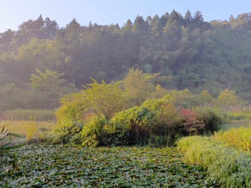 奥州:遠刈田温泉と嫁の実家の旅 実家~ (2014.09.20~22)