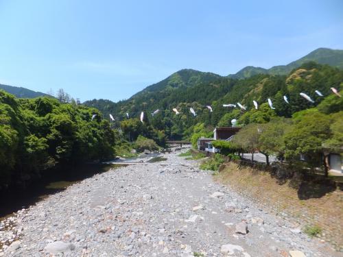 2014 徳島アウェイと土佐観光【その4】馬路村と北川村ドライブ