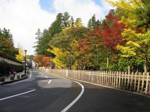 高野山へ紅葉を見に行ってきました。
