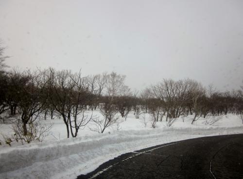 那須の雪の壁を突然見たくなりました~でも本当は足湯が目的でした。