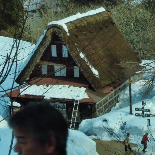 五箇山へ 砺波平野を南下:バス車窓から ☆散居村の風景を眺めて