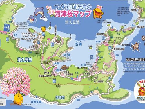 「四浦半島の河津桜」と「うすき雛めぐり」