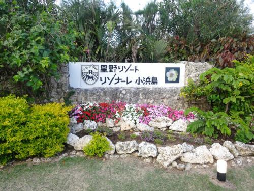 暖かい沖縄へ!のんびり離島めぐり♪  小浜島?編