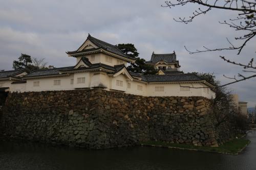 旅するイルカ♪ 大阪 岸和田城、食の宴へ