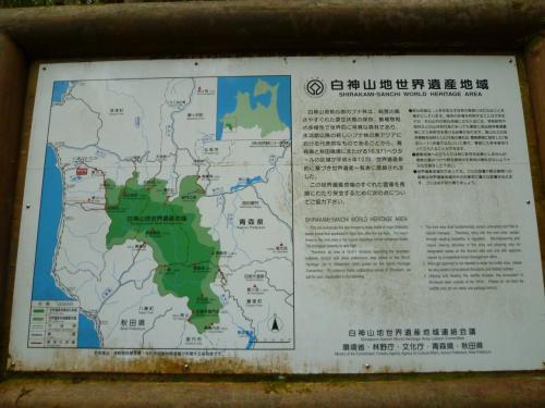 初めての世界遺産白神山地