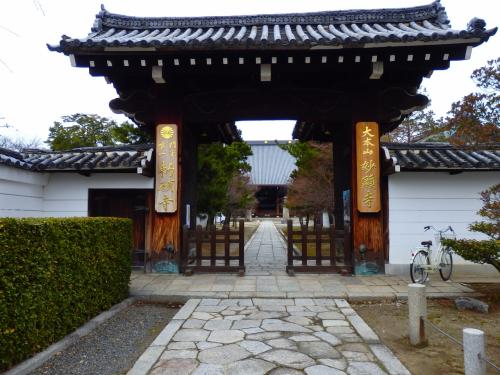 隠れた?桜と紅葉の名所妙顕寺の小さな竹の中庭からは何となくコーヒーの香りがする…んな訳ないか。