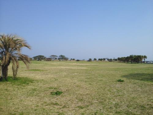 初めて訪れた知林ヶ島 ※鹿児島県指宿市