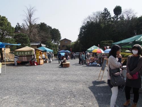 京都     山科、小野の随心院ではねずの梅を観る