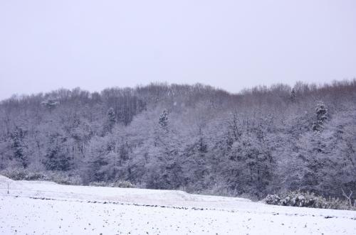 ◆福島・四季彩々・雪月花・Part41