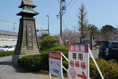 九州サクラ紀行・その1(長崎県)