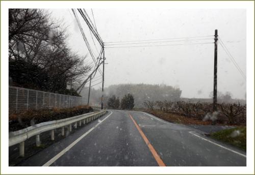 Solitary Journey [1546] 数メートル先が見えない猛吹雪に遭遇!大変でしたー。<伊勢本海道(368号線)山越え雪景色>三重県美杉町