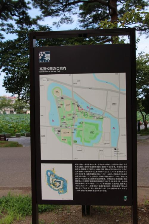 2014 夏とは思えない陽気でした!(その5) 上越市高田公園編