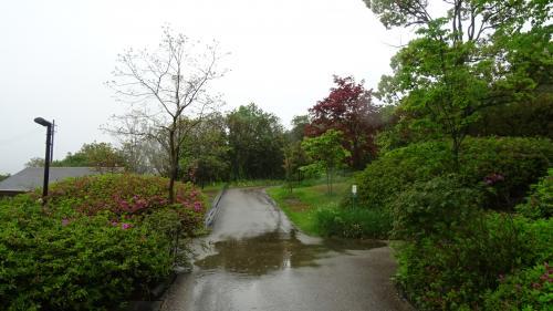 淡路島・東四国庭園めぐり(22) 北川村「モネの庭」マルモッタン 水の庭