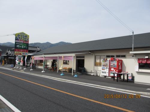 憧れの吉野の桜⑦(伊丹空港編)