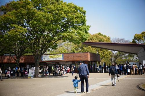 2015昭和記念公園ファン倶楽部チューリップオフ会に参加♪