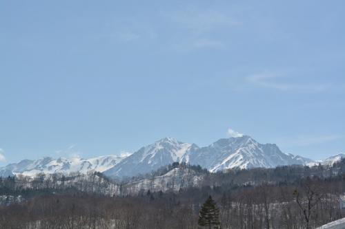 春の信州・花と雪を巡る