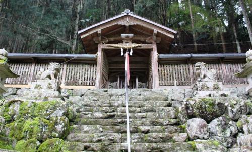 東吉野村笹野神社で枝垂れ桜を愛でる