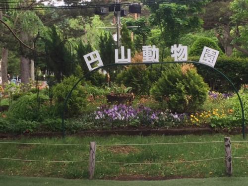 ホッキョククマの赤ちゃんに会いに円山(まるやま)動物園(札幌市)に行く(^o^) - 6月 2015年