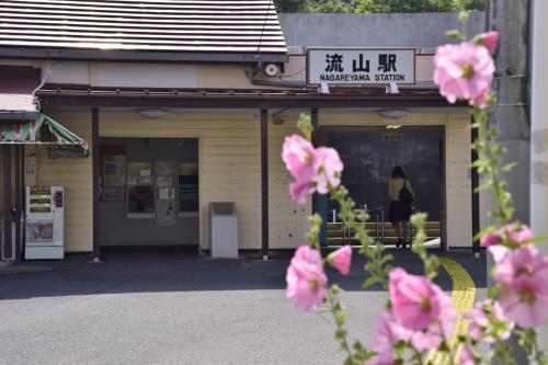 流鉄流山線沿線の紫陽花と本土寺に咲き広がる紫陽花を見に訪れてみた