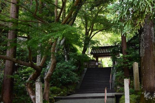 2015 岩船寺でアジサイを愛でる