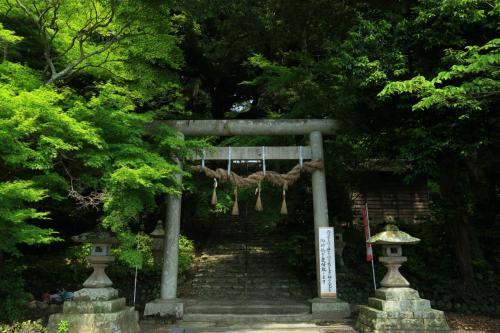 静岡 花めぐり~龍尾神社、逆川堤防、秋葉公園、大鐘家