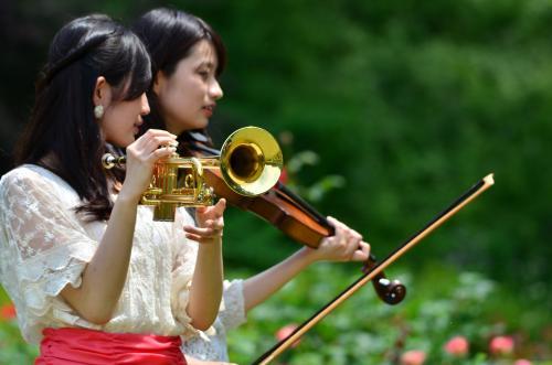 2015 花フェスタ記念公園(10)紫陽花求めて花フェスタ2015ぎふへ