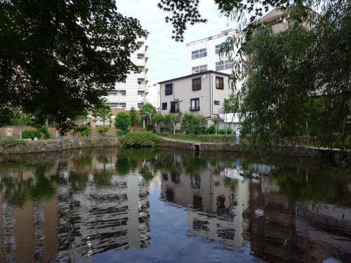 01.朝の三島の散歩道