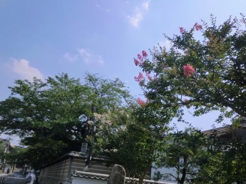 紫式部が源氏物語を書いた所,奇岩の寺としても知られる・石山寺参詣
