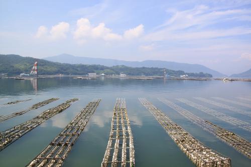江田島・周防大島と金魚ちょうちんの柳井を巡る旅(1日目)