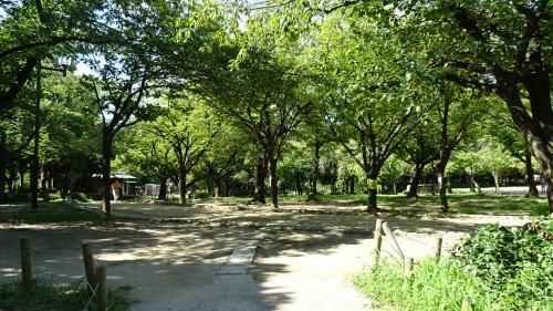 近松公園を散策。