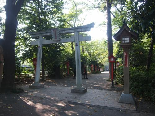 日本七社『冠稲荷神社』のサルスベリが見頃でした