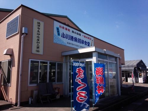 東海道 家康公の足跡を訪ねて② ~島田の蓬莱橋と東海の要・掛川城~