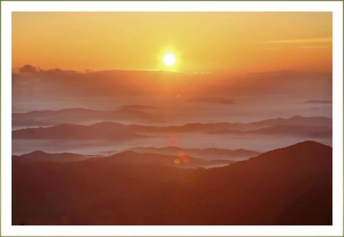 Solitary Journey [1649] 早朝の湿原で朝露にキラキラ輝く植物や昆虫を観察<芸北八幡湿原、SW車中泊の旅最終編>広島県北広島町