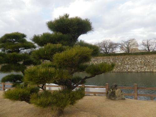 姫路の好古園を散策