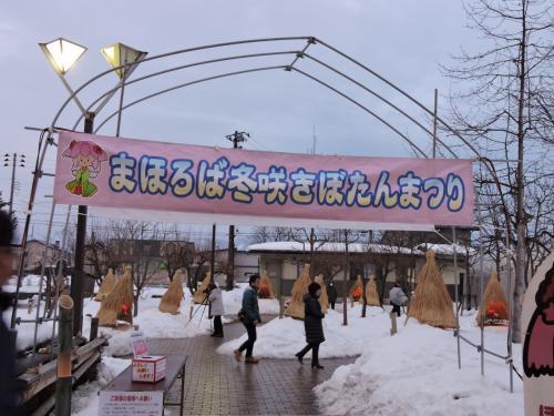 冬の花を見に高畠へ(冬咲きぼたん祭り)