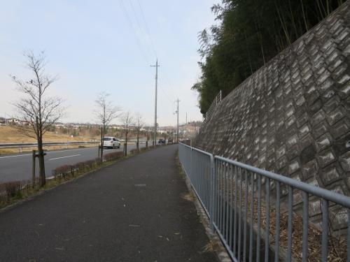 1人で歩く冬の京都☆けいはんな記念公園☆お散歩ついでに梅を楽しみましたヽ(^o^)丿