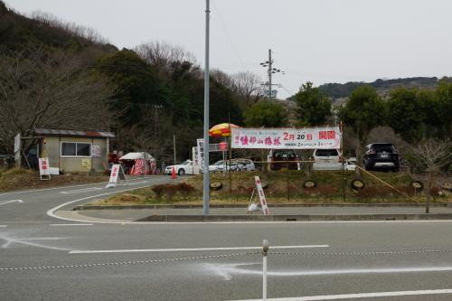 綾部山梅林を見に・・・、牡蠣もね!
