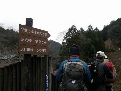 里は春の兆し、山はまだ雪の伊豆ヶ岳を楽しむ